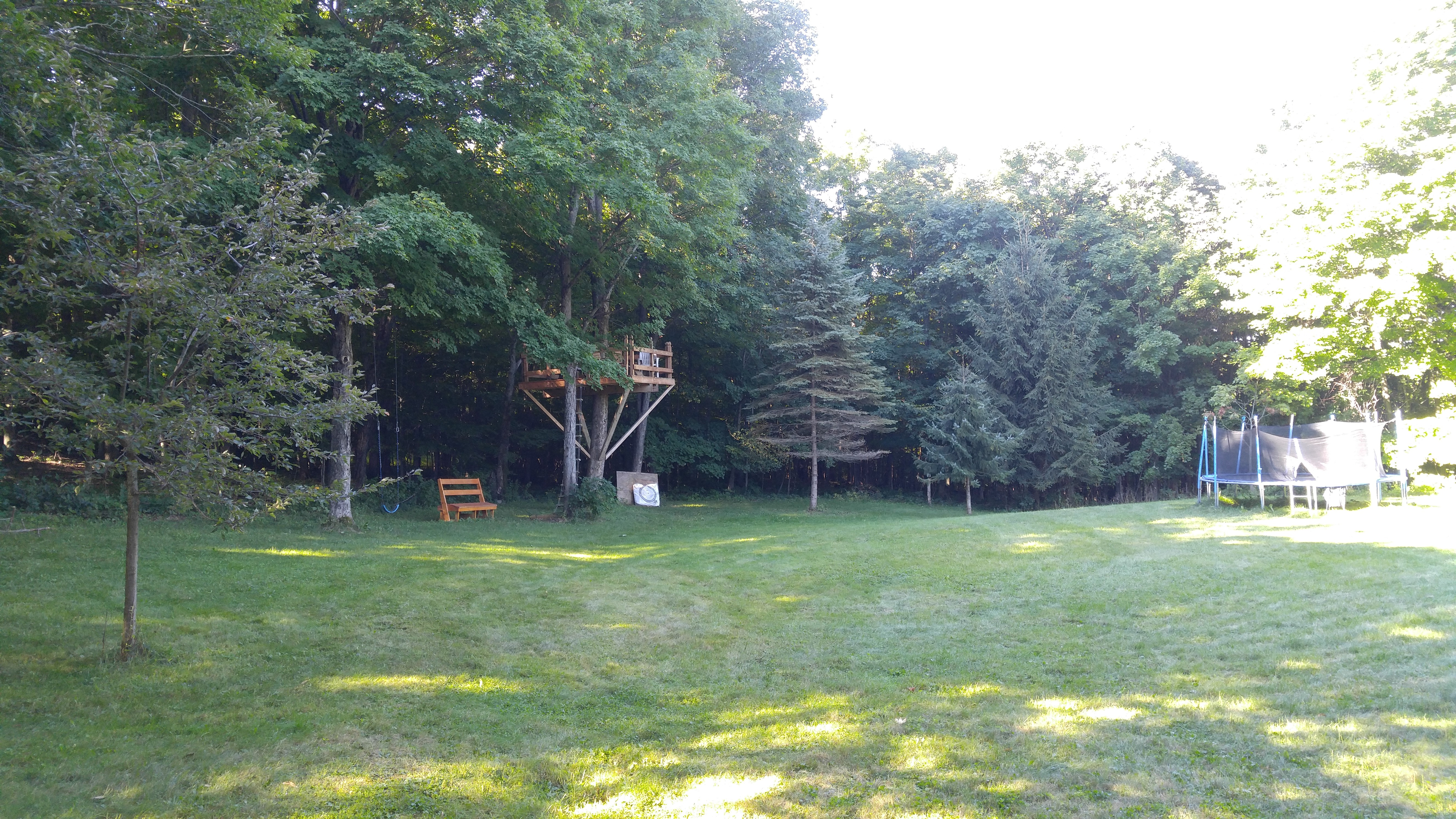 THE RESIDENCE - BACKYARD - TREE HOUSE AND TRAMPOLINE